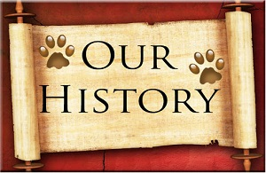Our History logo and link