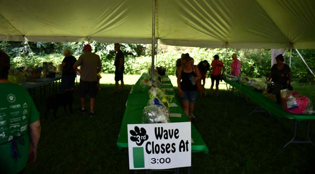 Silent auction tent